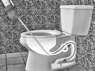 Toilet Drain Blockage